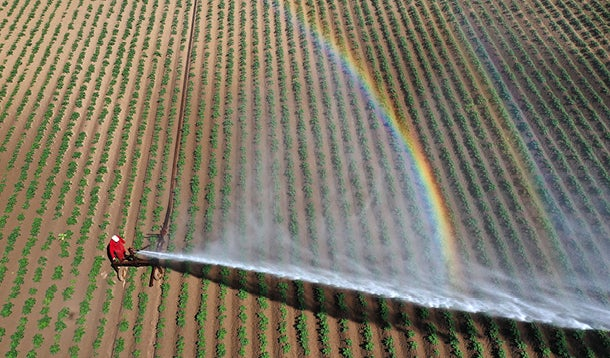 Farmer is spraying the land with water because of drought