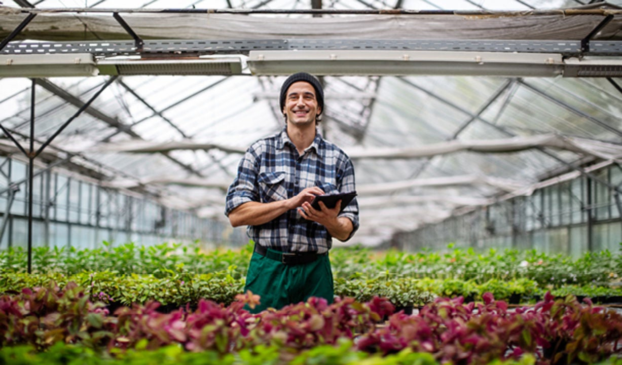 A young man is standing in a greenhouse with a tablet
